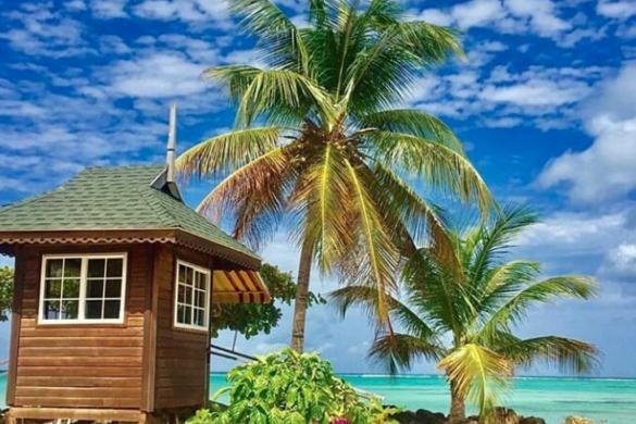 7 Best Trinidad and Tobago Instagram