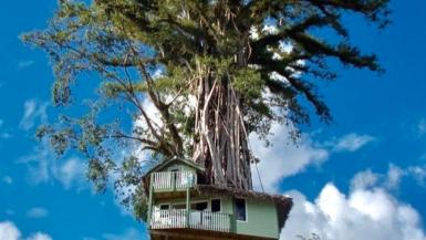 7 Best Samoa Instagram