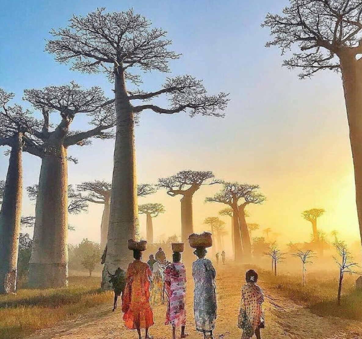 Instagrammable Spots In Madagascar