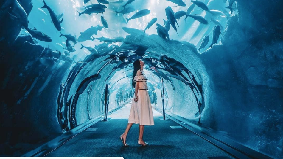 The 7 Most Instagrammable Spots In Dubai