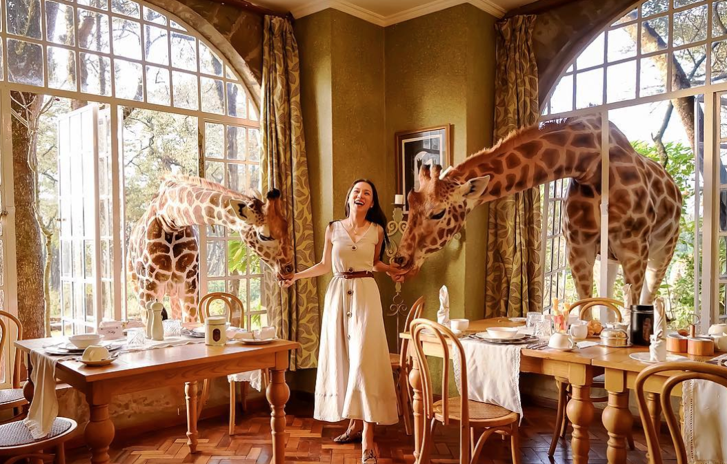 Image result for Giraffe Manor , Nairobi, Kenya