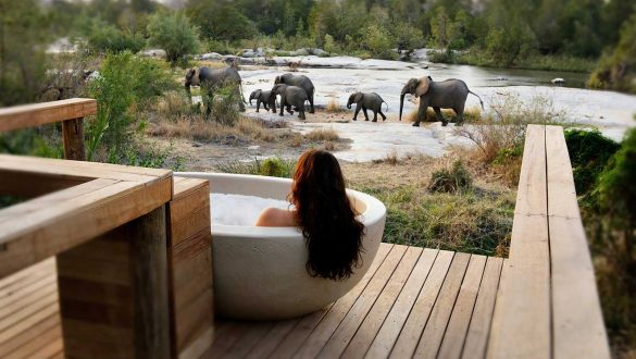 Londolozi Lodge, South Africa
