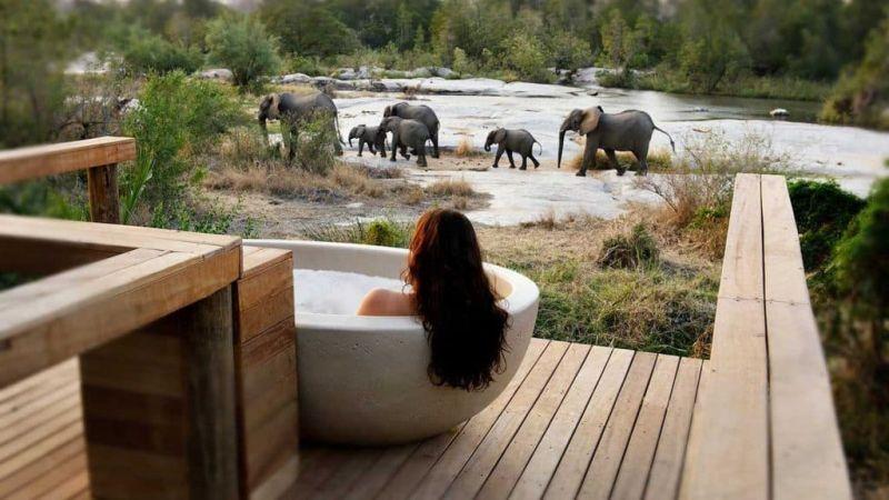 Londolozi Lodge, South Africa