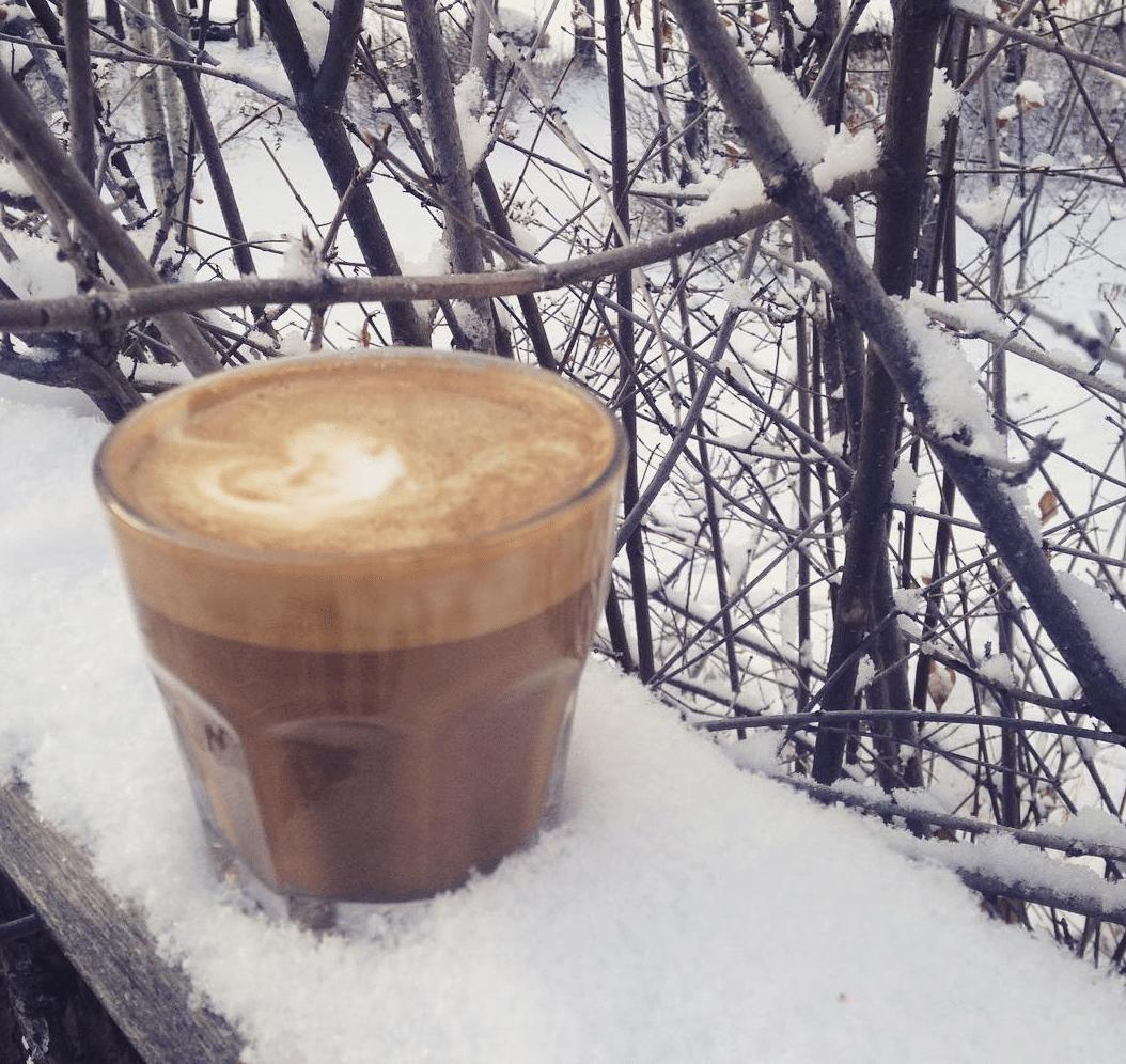 Bean North Coffee Roasting
