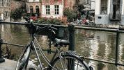 7 Best Ghent Instagram