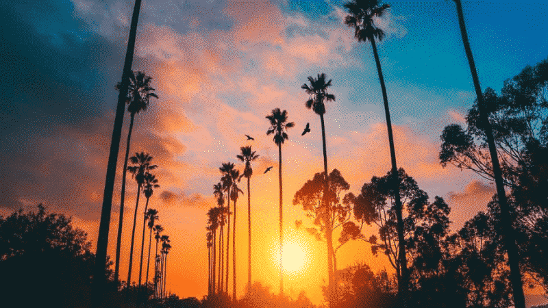 The Most Instagrammable Spots In California