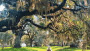 The Most Instagrammable Spots In South Carolina