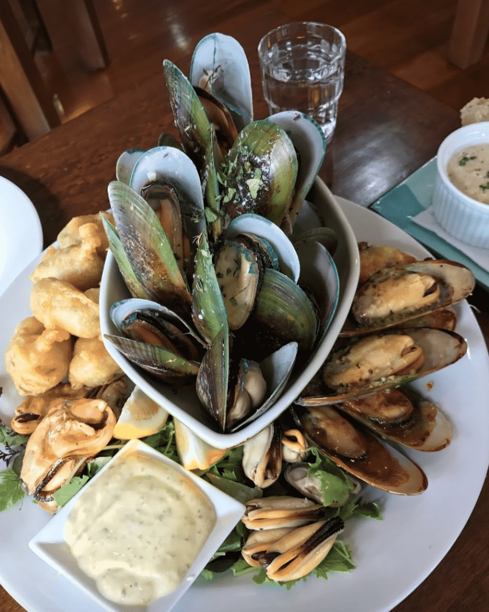 Fresh Mussels in New Zealand
