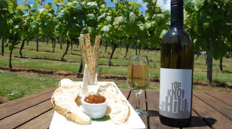Auckland's island of wine