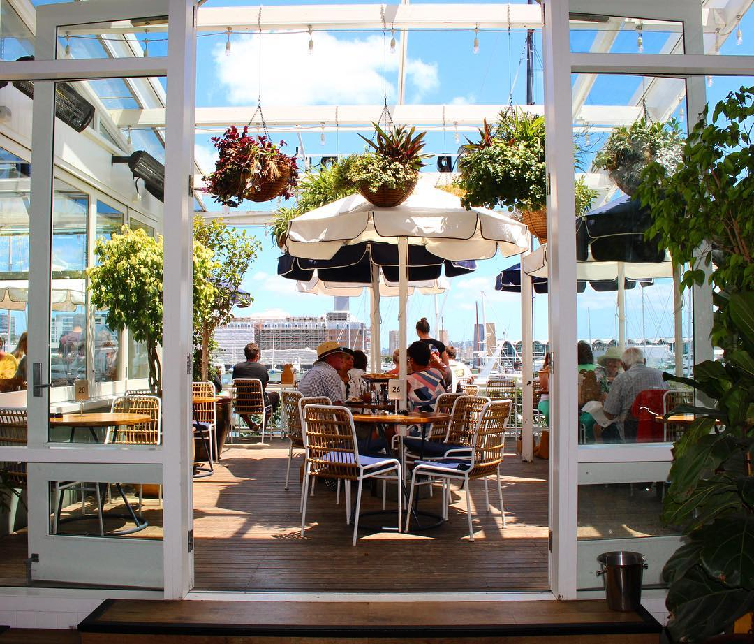 Top 7 Auckland Bars