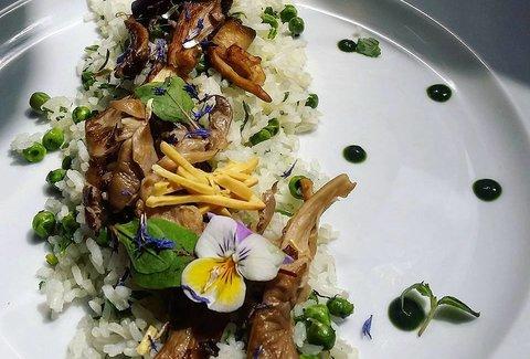 Gentle Gourmet Iin France