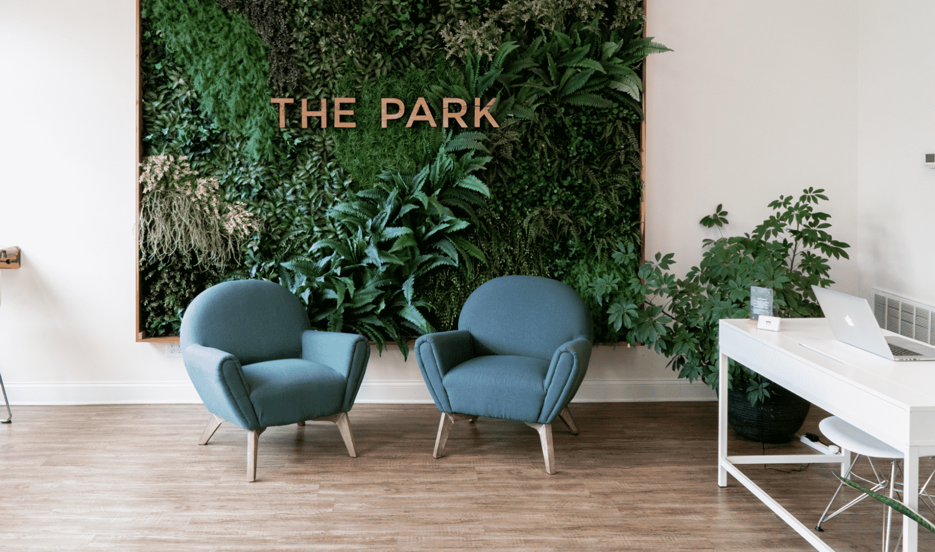 The Park Co working place