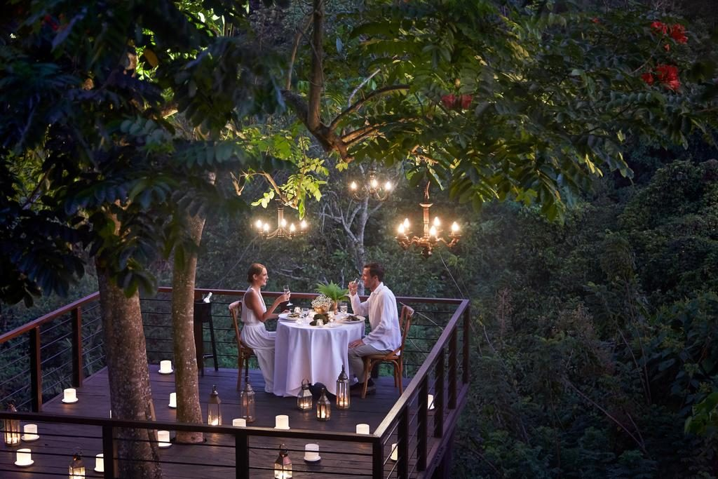Forest Deck Treetop Restaurant