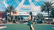 7 Best Instagrammable Spots In Orlando