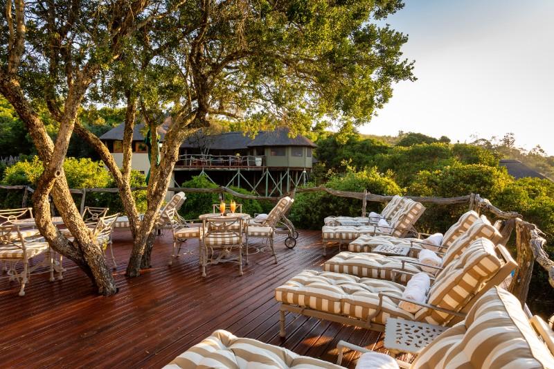 Tree Tops Safari Lodge in Africa