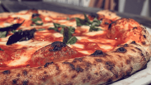 The 25 Best Florida Pizza