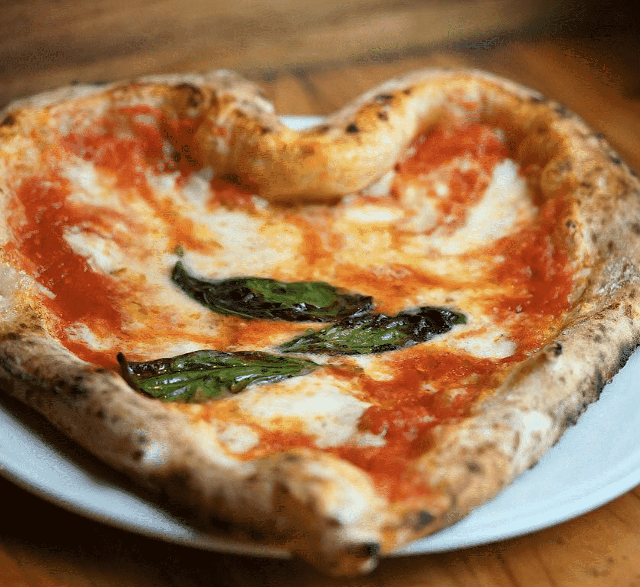 Oslo pizza