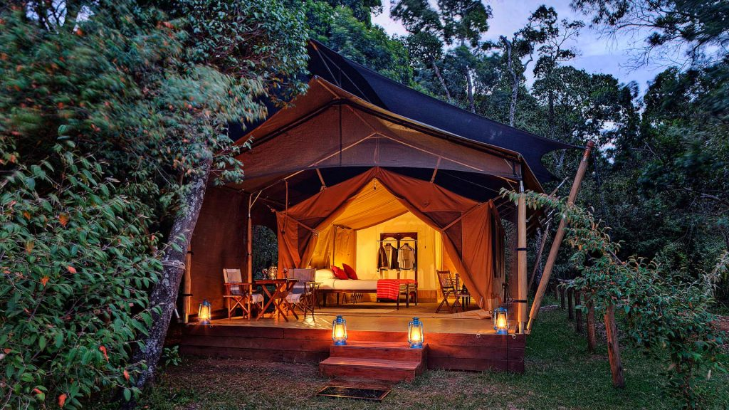 Elephant Pepper Camp in Africa