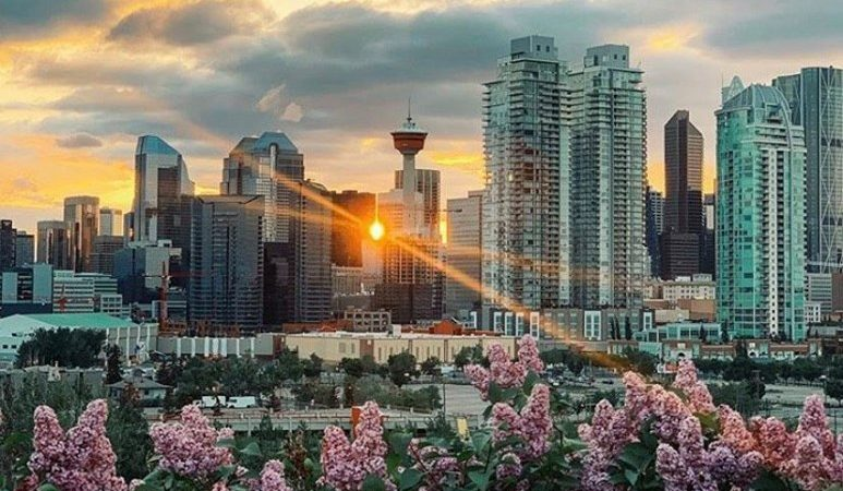 The 7 Best Things To Do Calgary