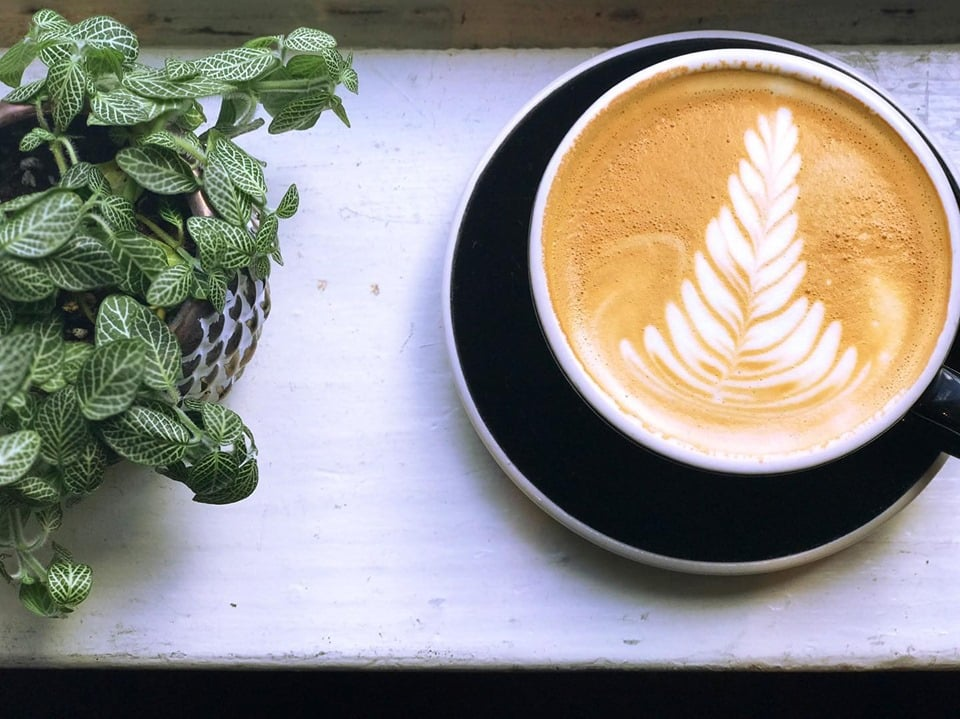 The 7 Best Coffee Shops In Charleston