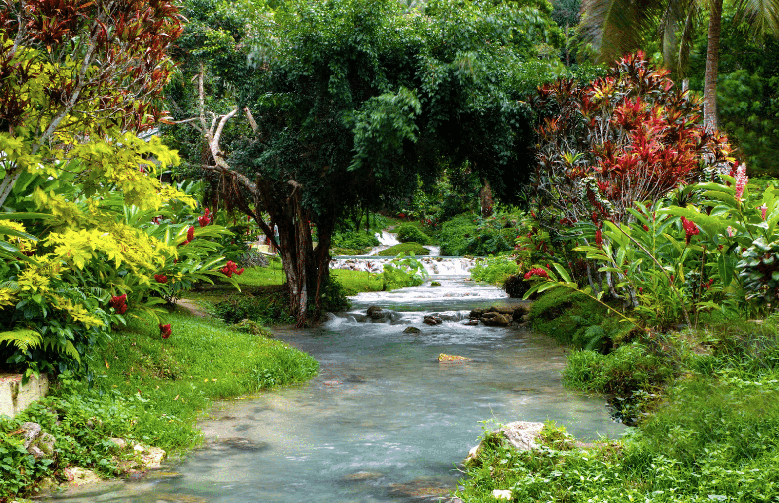 Things to do in Vanuatu