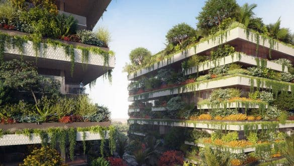 Africa's First Vertical Forest In Cairo