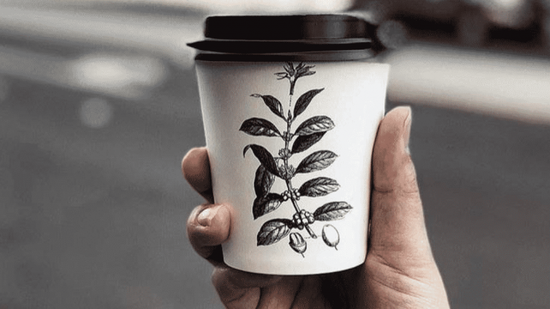 The 7 Best Coffee Shops In Canberra