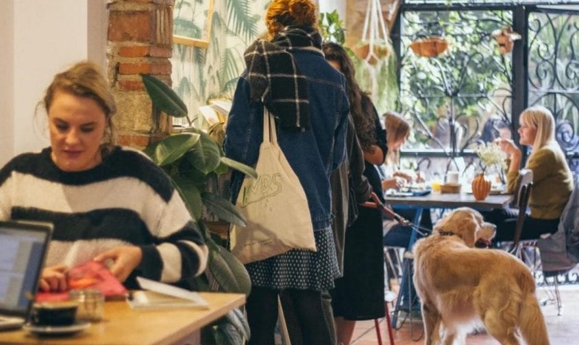 Best Coffee Shops in Valencia for Digtal Nomads