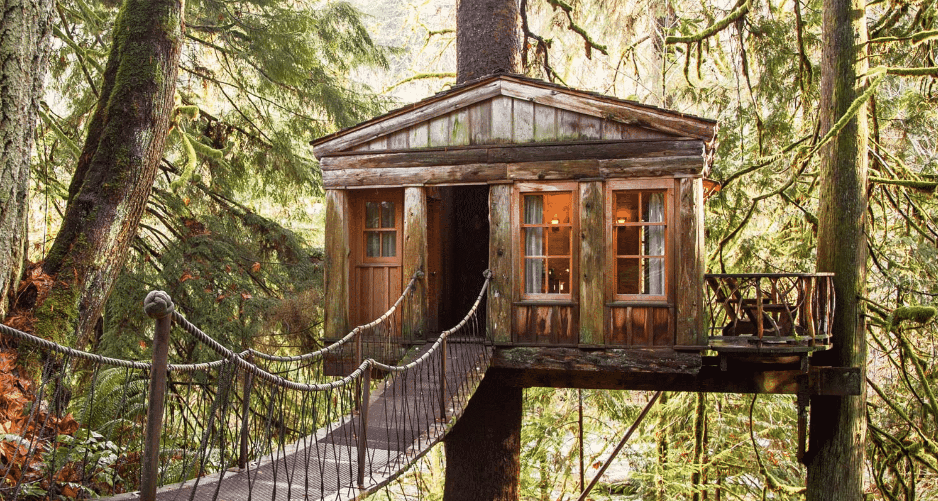 Treehouse for rent best in world