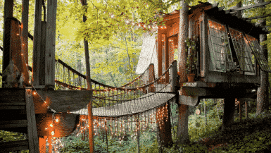 Best treehouses to rent in the world