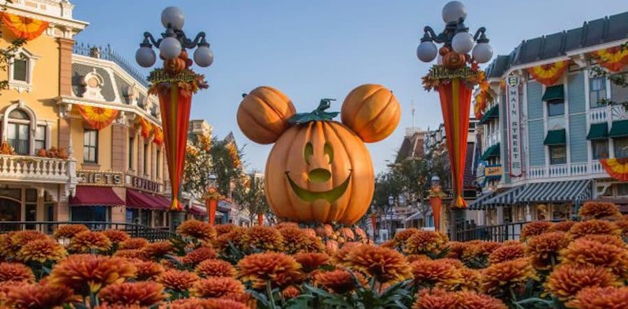 Discounts on Disneyland Tickets