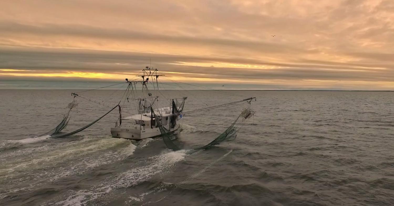 Best Restaurants New Orleans 2020