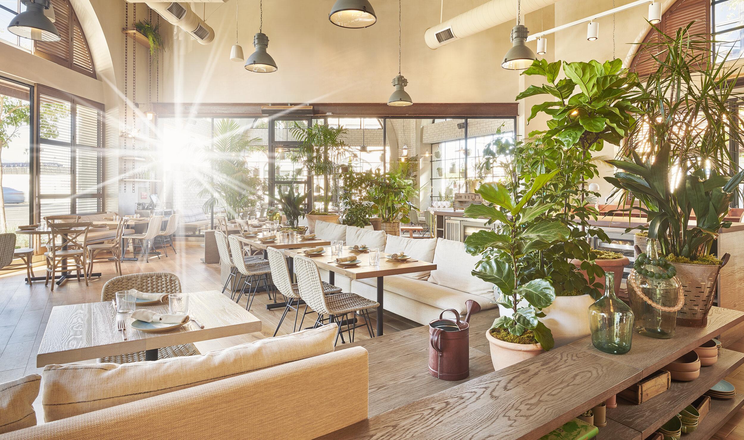 Hottest Restaurants in Chicago 2020