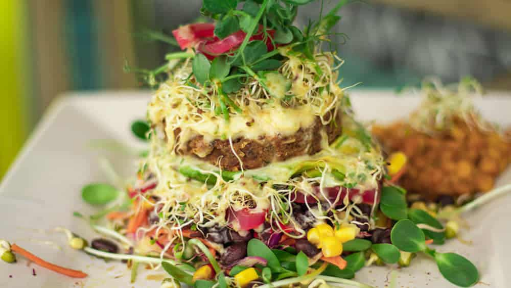 Vegan Food Cape Town