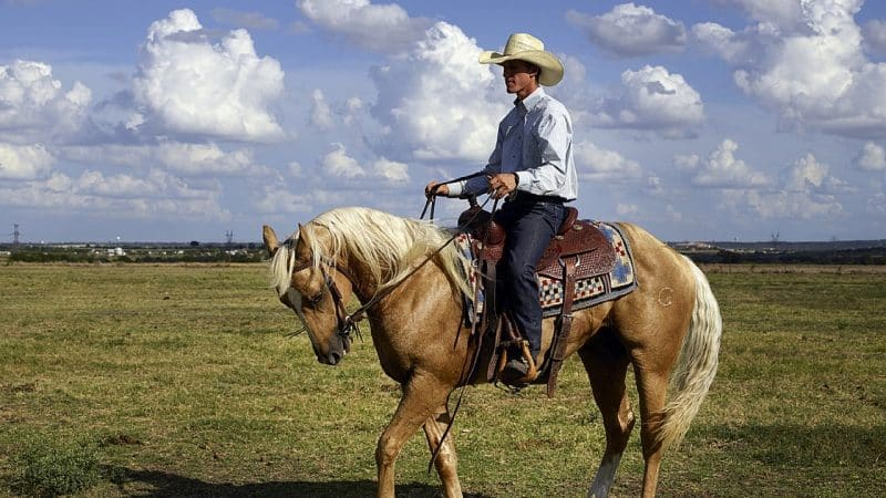 Top 10 Texas Slang Words