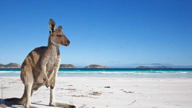 best beaches Australia