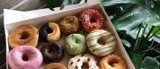 Best Donuts In Houston