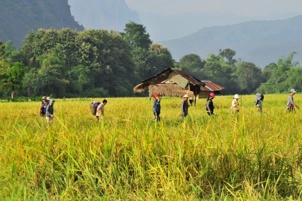 Travel Sustainably Laos