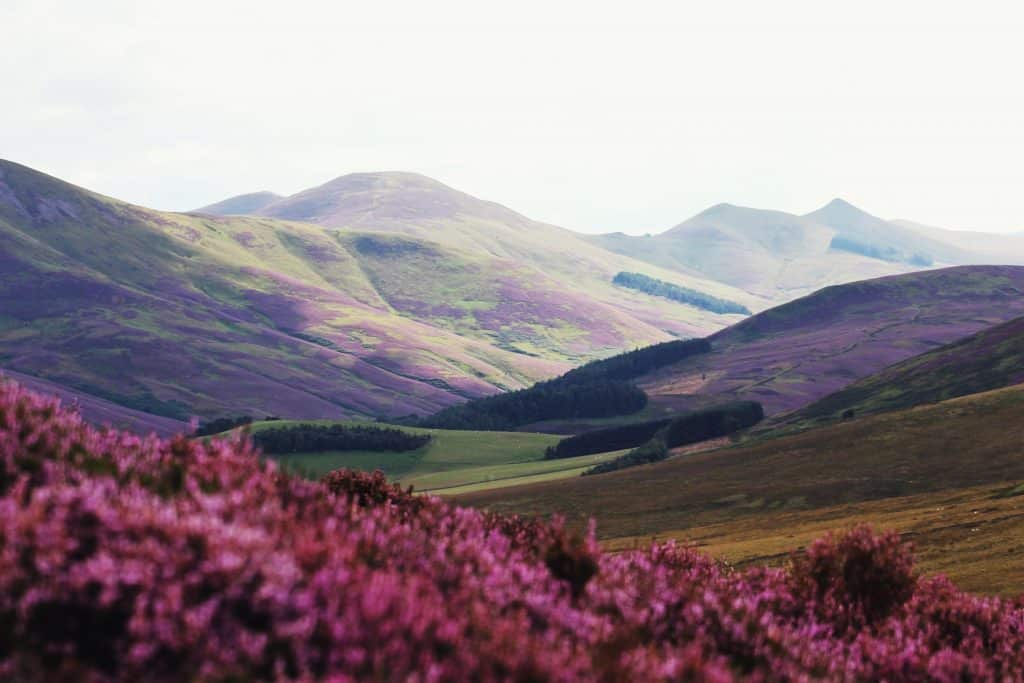 best walks in edinburgh