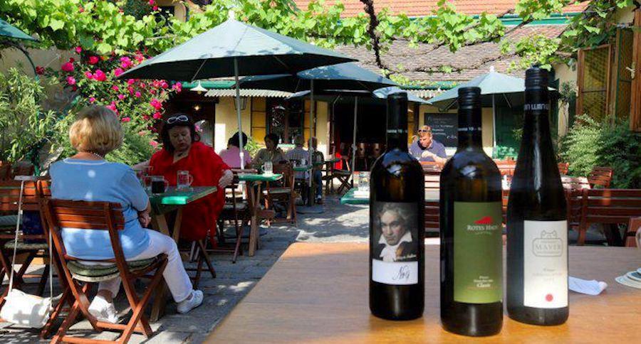 Wine Garden Vienna