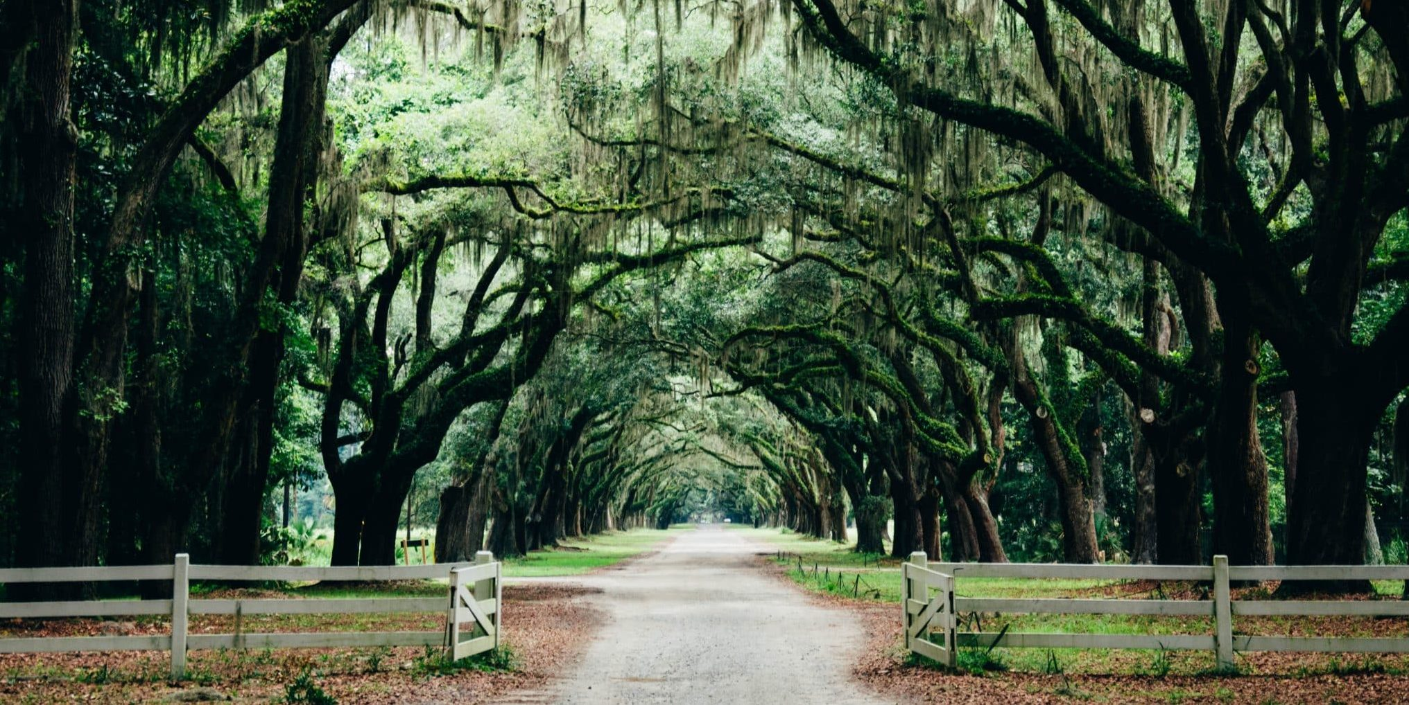 Savannah Georgia Romantic Destinations USA