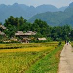 Trips From Hanoi