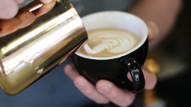 Best Florida Coffee shops