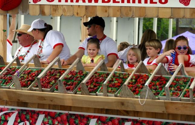 ponchitoula strawberry festival