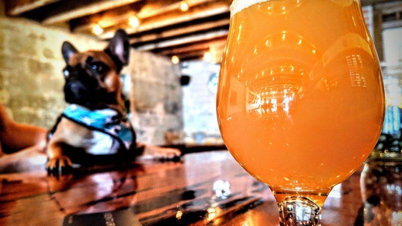 Best Craft Beer Bars In Orlando