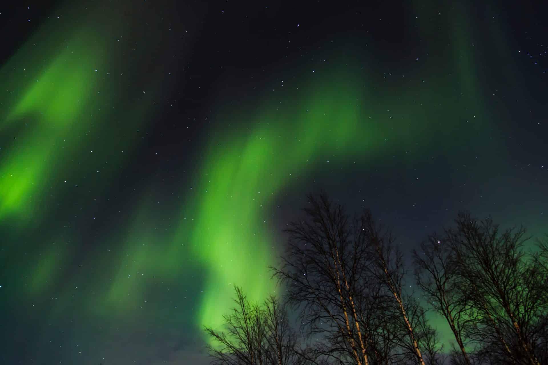 Livestream The Northern Lights