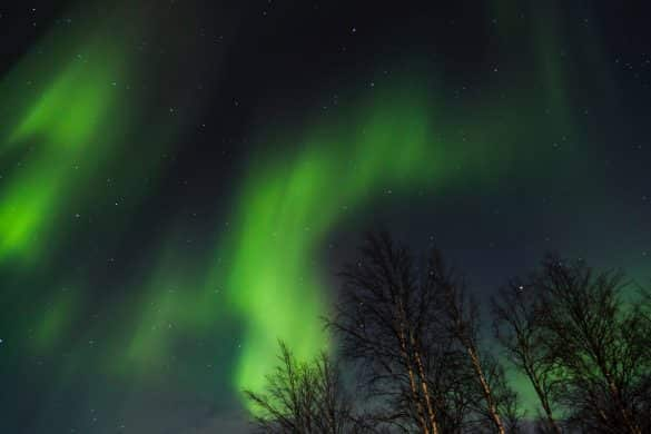 Livestream The Northern Lights