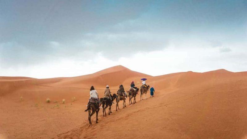 largest deserts world