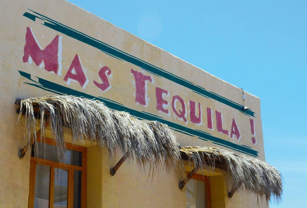 Difference between Tequila & Mezcal