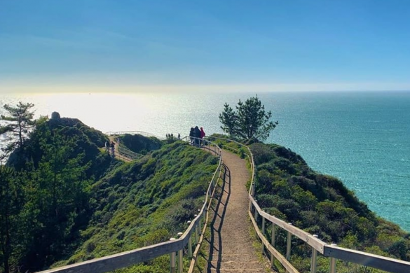 day trips from San Francisco